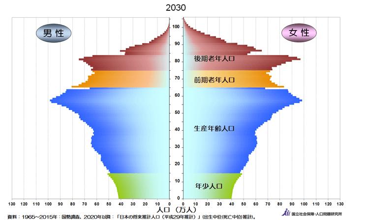 2030年問題とは?高齢化と労働力...